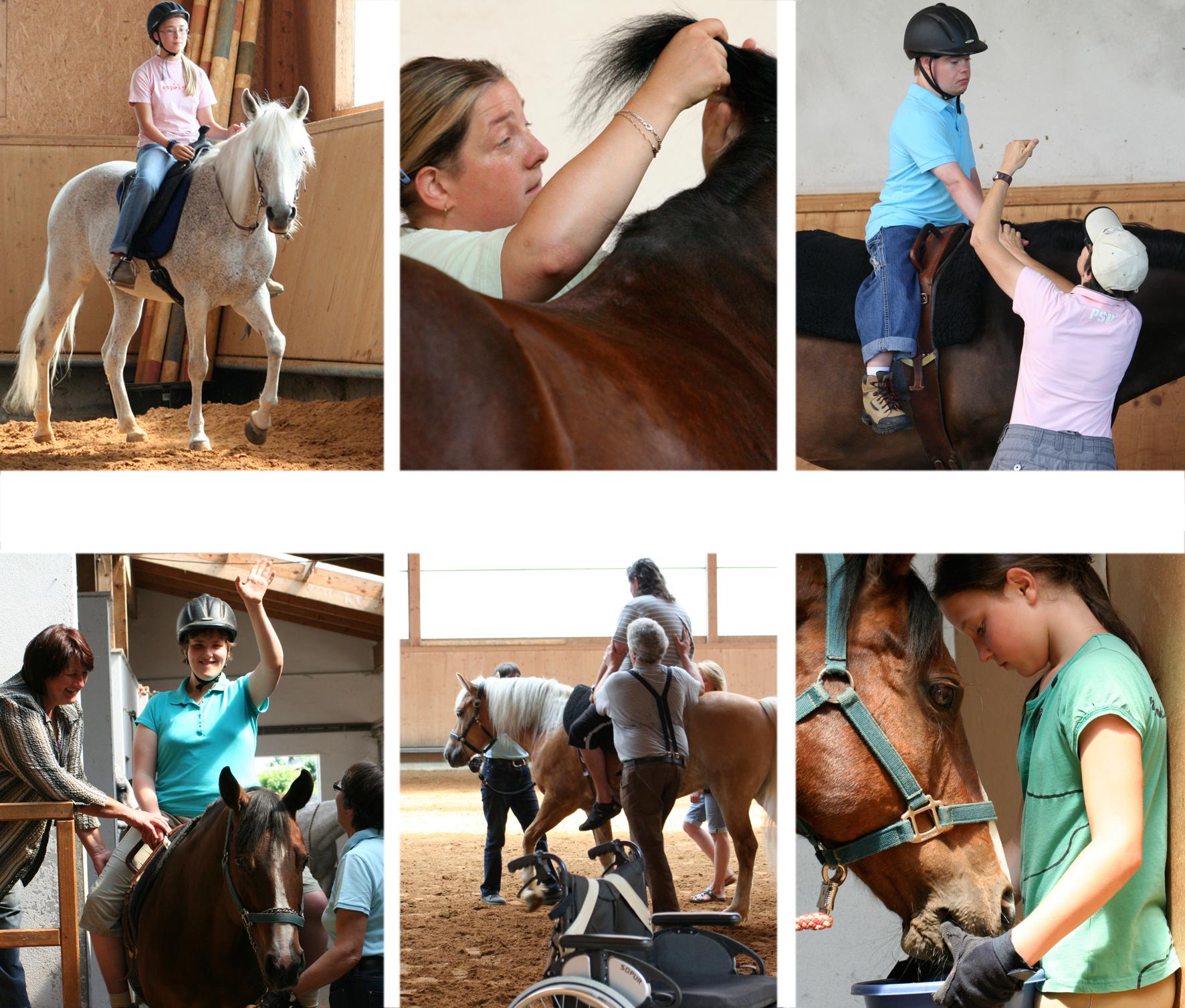 PPRT - Pferdegestützte Pädagogik, Rehabilitation & Therapie
